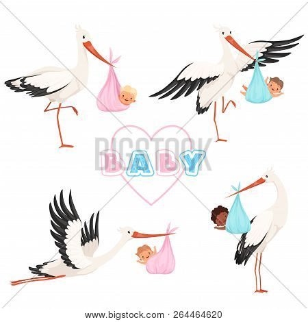 Stork With Baby. Cute Bird Flying With Newborn Pacifier Little Children Vector Cartoon Mascot Funny