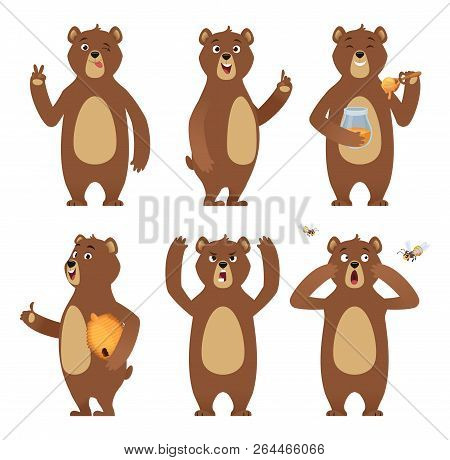Brown Bear Cartoon. Wild Animal Standing At Different Poses Nature Characters Vector Collection. Ill