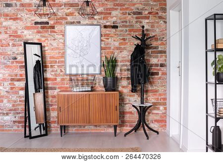 Wooden Cupboard With Plant On It Between Mirror And Black Hanger, Real Photo