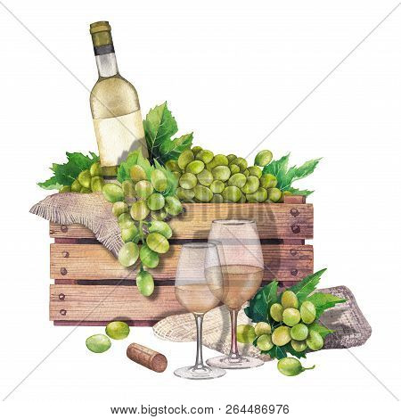 Watercolor Box Of Bottle And Grapes, Wine Glasses