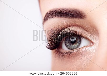 poster of Female Eye with Extreme Long False Eyelashes. Eyelash Extensions. Makeup, Cosmetics, Beauty. Close up, Macro