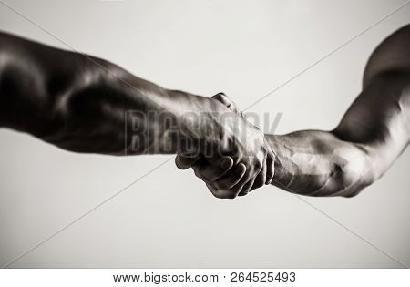 Two Hands, Isolated Arm, Helping Hand Of A Friend. Handshake, Arms. Friendly Handshake, Friends Gree