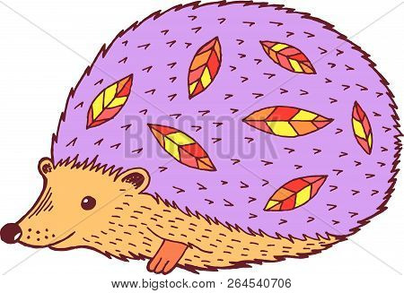 Cartoon Hedgehog - Colorful Graphic Drawing. Isolated Doodle Ele