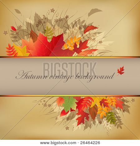 Autumn Abstract Vintage Background On Old Paper, Vector Illustration