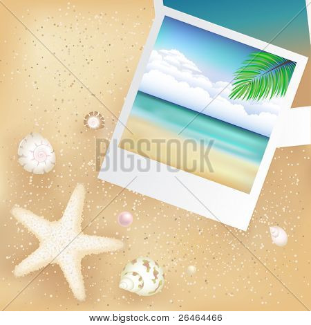 2 Blank Photos With Starfish, Cockleshells And Sand, Vector Illustration