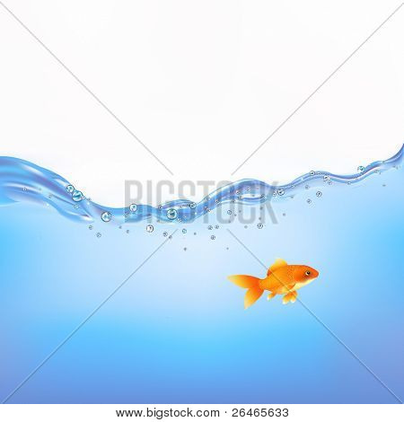 Goldfish Swimming In Water, Vector Illustration