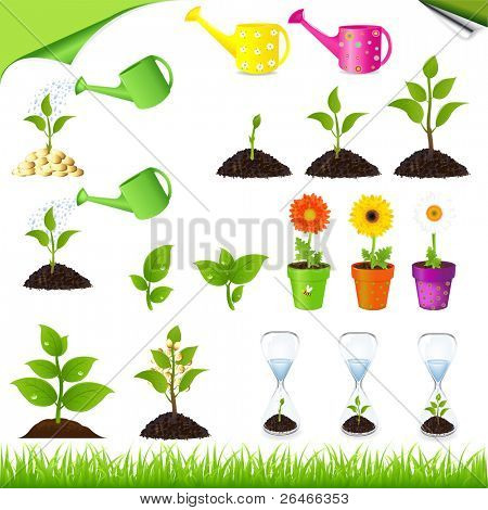 Sprouts, Watering ?ans, Sand-glass And Flowers In Pots, Vector Illustration