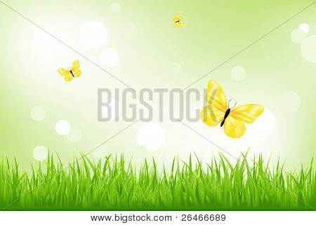 Nature Background, Green Grass And Yellow Butterflies, Vector Illustration