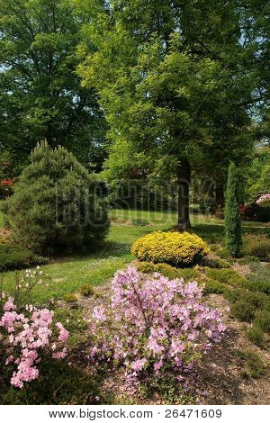 - beauty colored garden on  spring
