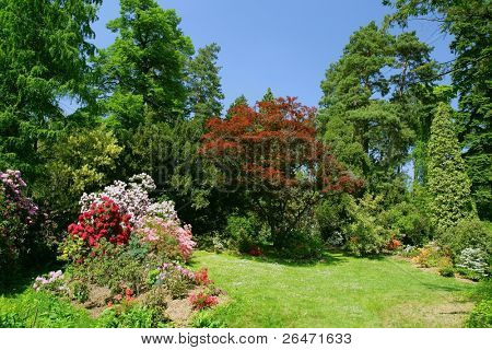 Beauty colored garden on  spring