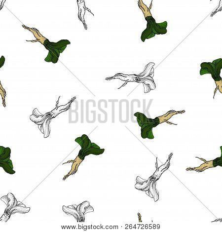 Horseradish Vector Original Coloured Pattern For Web, Textile, Branding, T-shirts, Cards, Craft