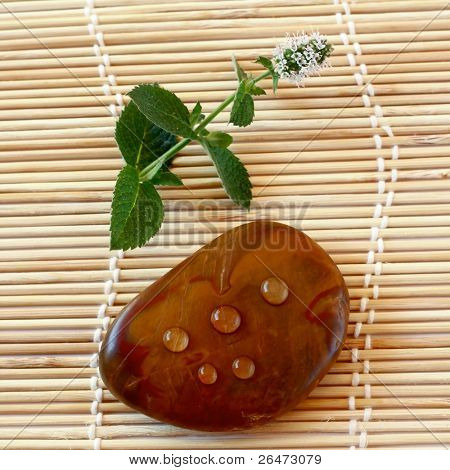 spa stone with droplets and leaf