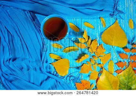 Healing Cup Of Tea In A Scarf On Blue Wooden Background Wiyh Autumn Leaf