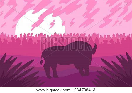 Landscape With Wild Bizon On Field. Pink Scene With Sunset Or Sunrise. Vector