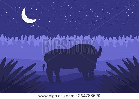 Landscape With Wild Bizon On Field. Prairie Landscape. Night Panorama With Moon. Natural Scene. Vect