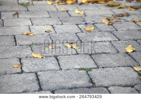 cobblestone walkway in the city