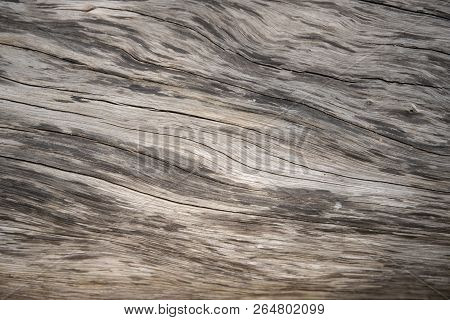 Aged Wooden Texture Macro Photo. Grey Timber With Weathered Cracks. Natural Background For Vintage D