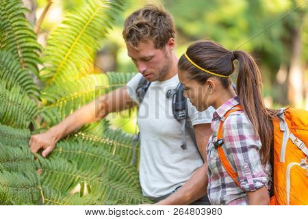 Nature guide biologist naturalist botanist teacher teaching to student about plants and biology. Interpretive walk in rain forest, hiking people studying with backpacks. poster