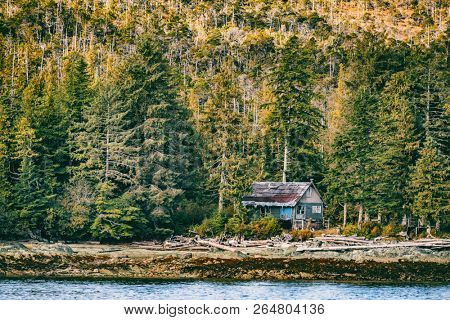 Abandoned house in the forest wilderness - Alaska landscape background.
