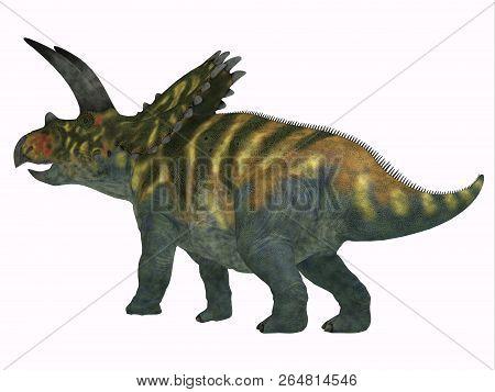 Coahuilaceratops Dinosaur Tail 3d Illustration - Coahuilaceratops Was A Herbivorous Ceratopsian Dino