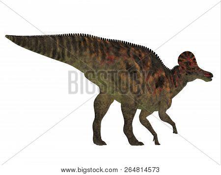 Corythosaurus Dinosaur Tail 3d Illustration - Corythosaurus Was A Duck-billed Herbivorous Dinosaur T