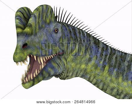 Dilophosaurus Dinosaur Head 3d Illustration - Dilophosaurus Was A Large Carnivorous Theropod Dinosau