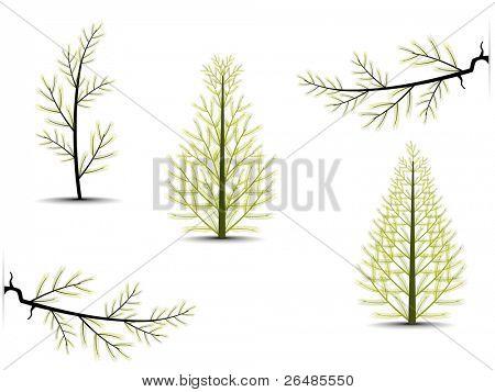 Noel, sonbahar ve diğer diğer günlerinde resimde farklı ağaçlar dizi.Vektör