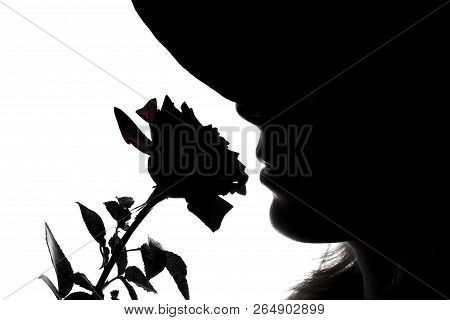 A Silhouette Of   Woman  With Rose On A White Background