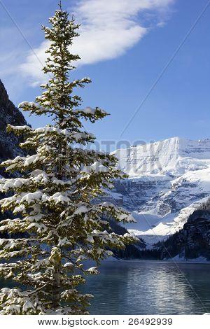 Winter In Lake Louise