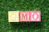 Color wood block in word GMO (abbreviation of Genetically Modified Organisms) on artificial green grass background poster
