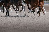 Exciting motion blur of speeding race horses poster