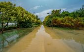Flooded old Turia river bank after heavy rain poster
