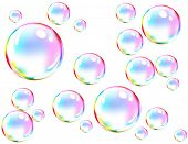 Vector of colored soap bubbles poster