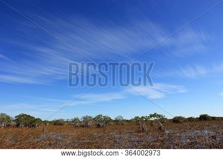 Feathery High Altitude Cloudscape Over Nine Mile Pond In Everglades National Park, Florida On Sunny