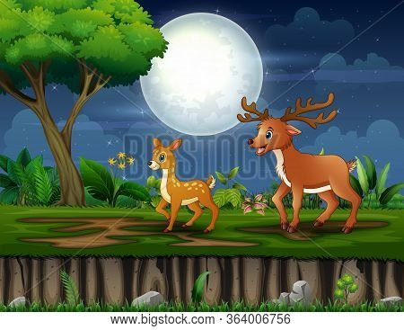 Cartoon Mother Deer And Her Cub Walking At Night