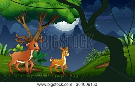 Night Forest With Mother Deer And Her Cub