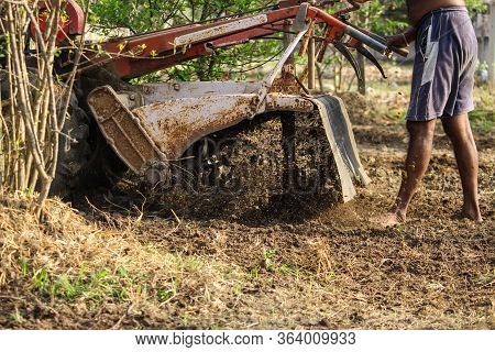 Farmer Handing Mini Tractor For Planting Root Crops In The Countryside Agriculture. Plowing A Field