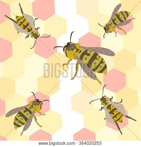 Wasp Vector Illustration Colorful Wasp Wildlife Insect