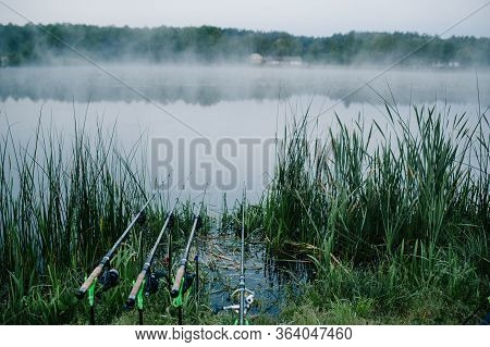 Four Carp Fishing Rods In Rod Pod On A Background Of Lake And Nature. Fishing Background. Carp Fishi