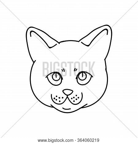 Cute Monochrome Lineart British Shorthair Kitten Face Vector Clipart. Pedigree Kitty Breed For Cat L