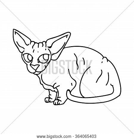 Cute Cartoon Monochrome Sphynx Kitten Vector Clipart. Pedigree Exotic Kitty Breed For Cat Lovers. Pu