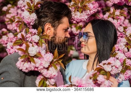 Love, Romance And Beauty Concept. Couple Viewing Cherry Blossom At Park. People In Spring. Sweet Kis