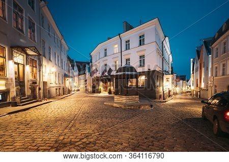 Tallinn, Estonia - December 4, 2016: Evening View Of Cat Well At Intersection Of Rataskaevu And Dunk