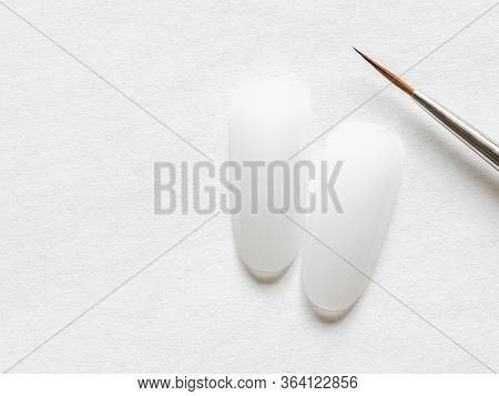 Learning To Draw On Nail Tips Concept. Clean Nail Tips And Paint Brush For Manicure On White Backgro