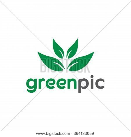 Green Pic Logo Templates And Vector, Calm Forest