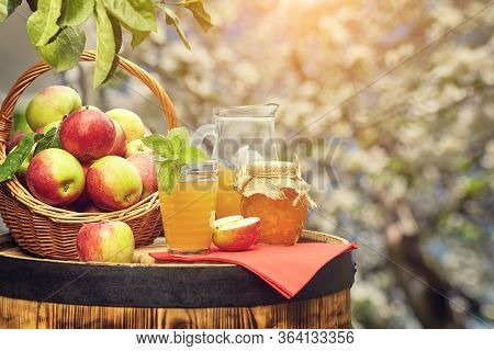 Basket of apples on background orchard standing on a barrel. Apple juice bottle.