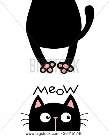 Black Cat Looking Up. Meow. Funny Face Head Silhouette. Hanging Fat Body Paw Print, Tail. Kawaii Ani