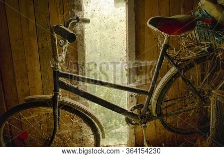 Old Forgotten Bicycle Covered In Cobwebs In The Background Of A Shed Window