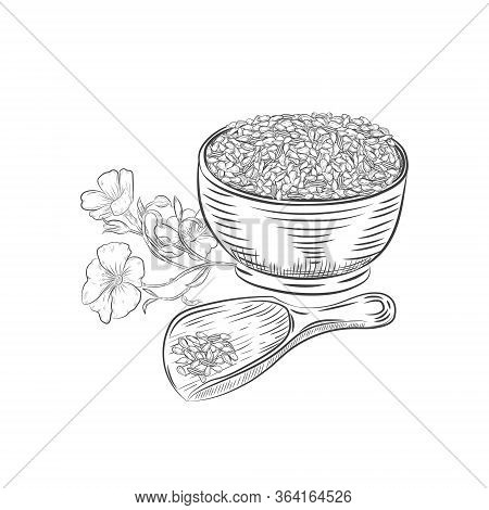 Flax Seeds In Bowl And Scoop Vector Illustration. Flax Seed Hand Drawn Botanical Elements.