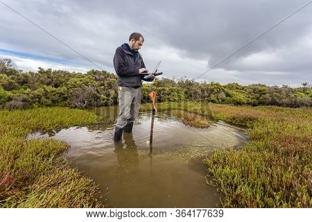 Scientist Downloading Water Level Logger Data In A Coastal Wetland To Understand Inundation Period A